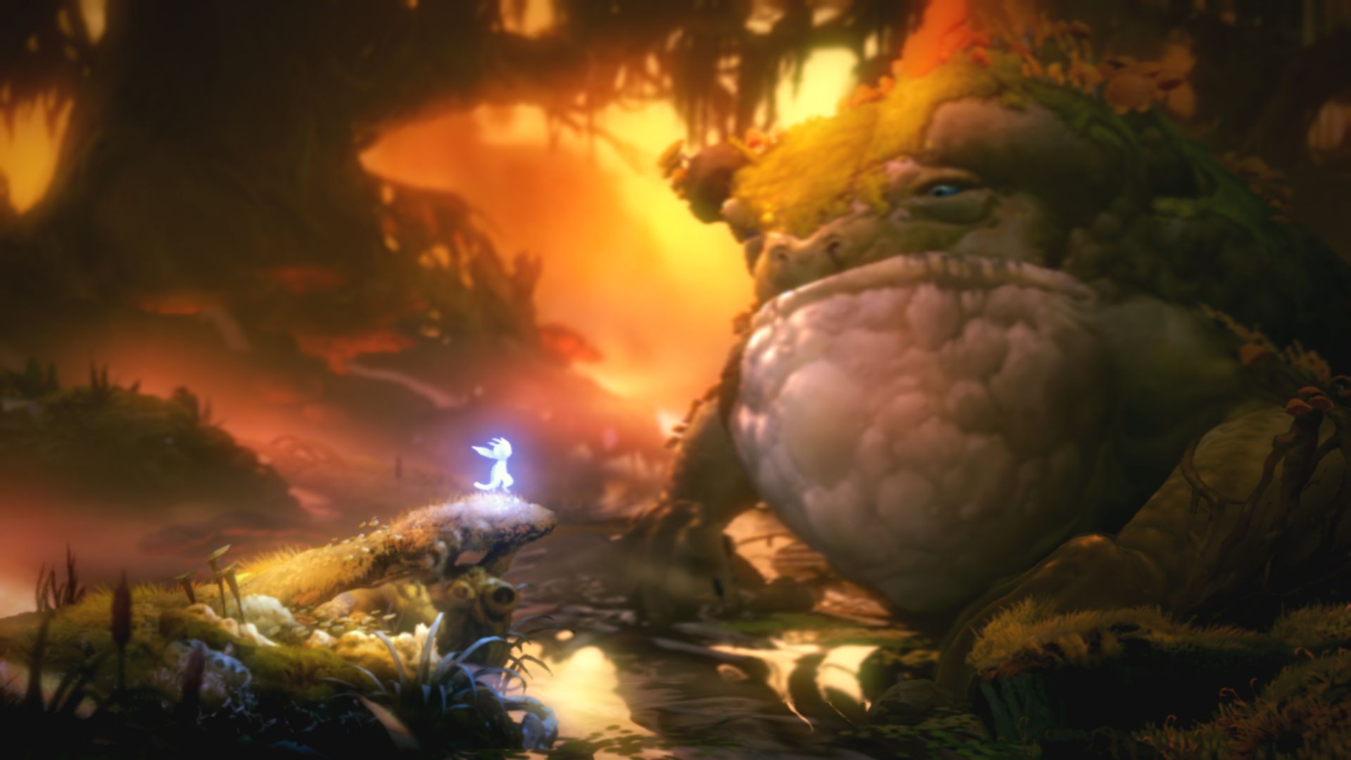 Ori and the Will of the Wisps landscape