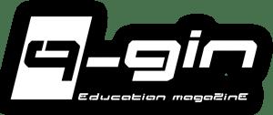 Q-Gin Videogiochi
